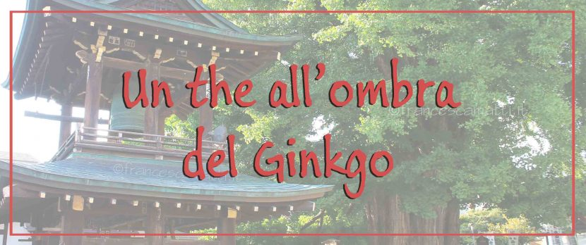Un the all'ombra del Ginkgo