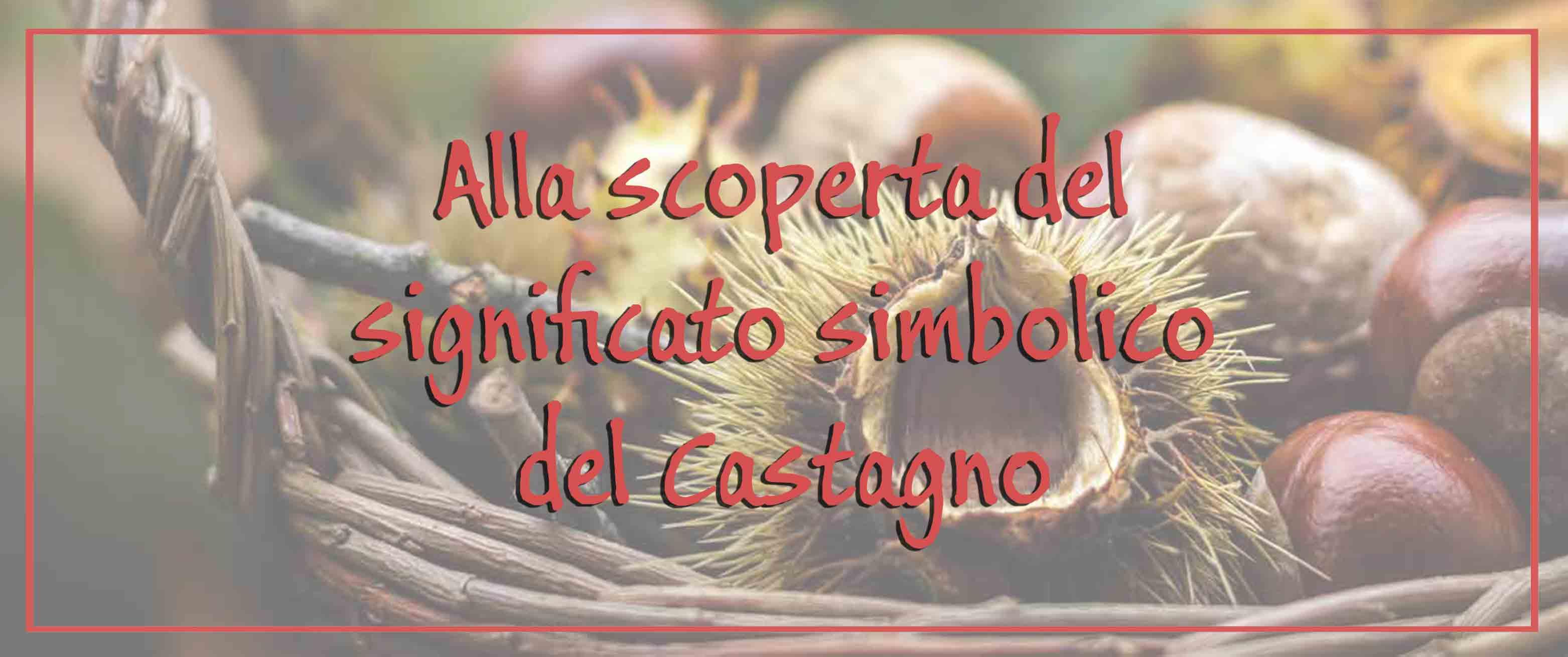 alla scoperta del significato simbolico del castagno