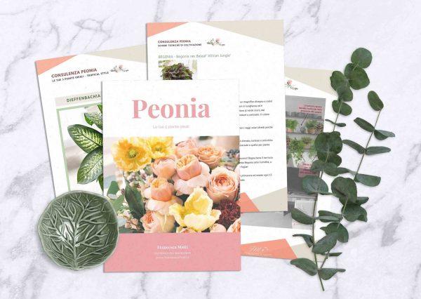 Consulenza Peonia